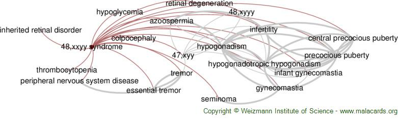 Diseases related to 48,xxyy Syndrome