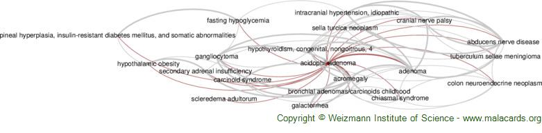 Diseases related to Acidophil Adenoma
