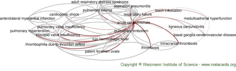 Diseases related to Acute Cor Pulmonale
