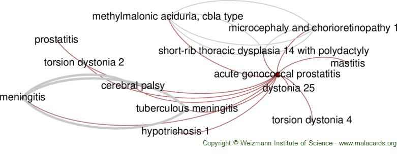 Diseases related to Acute Gonococcal Prostatitis