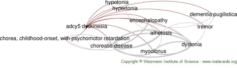 Diseases related to Adcy5 Dyskinesia