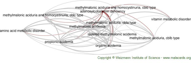 Diseases related to Adenosylcobalamin Deficiency