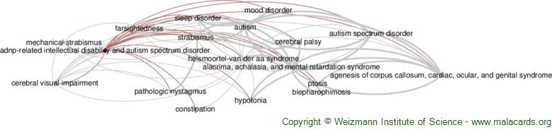 Diseases related to Adnp-Related Intellectual Disability and Autism Spectrum Disorder