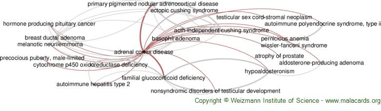 Diseases related to Adrenal Cortex Disease