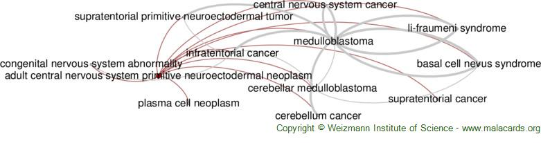 Diseases related to Adult Central Nervous System Primitive Neuroectodermal Neoplasm