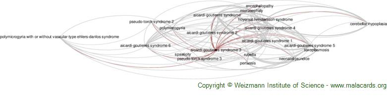 Diseases related to Aicardi-Goutieres Syndrome 3