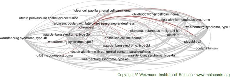 Diseases related to Albinism, Ocular, with Late-Onset Sensorineural Deafness