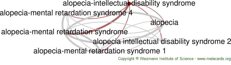 Diseases related to Alopecia-Intellectual Disability Syndrome