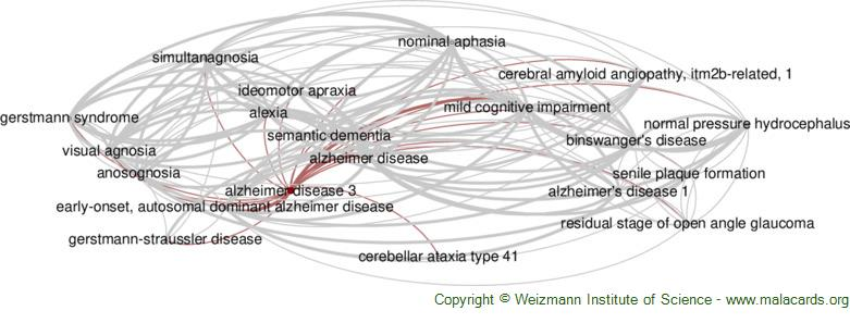 Diseases related to Alzheimer Disease 3