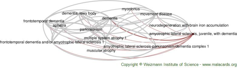 Diseases related to Amyotrophic Lateral Sclerosis, Juvenile, with Dementia