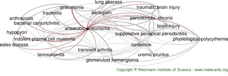 Diseases related to Anaerobic Pneumonia