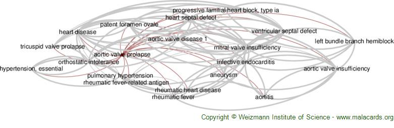 Diseases related to Aortic Valve Prolapse