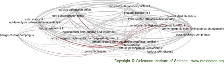 Diseases related to Arrhythmogenic Right Ventricular Dysplasia, Familial, 4