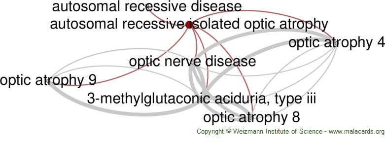 Diseases related to Autosomal Recessive Isolated Optic Atrophy