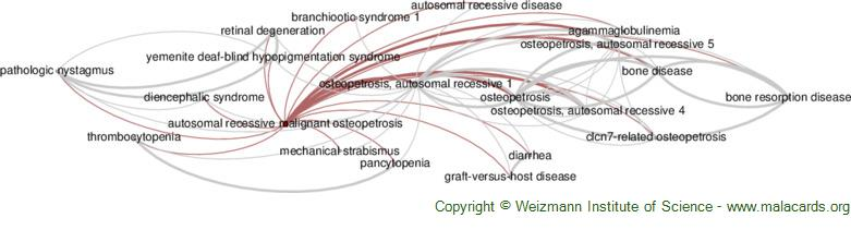 Diseases related to Autosomal Recessive Malignant Osteopetrosis