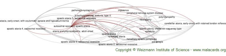 Diseases related to Autosomal Recessive Spastic Ataxia