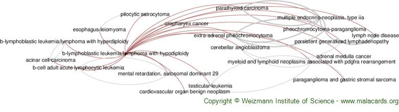 Diseases related to B-Lymphoblastic Leukemia/lymphoma with Hypodiploidy