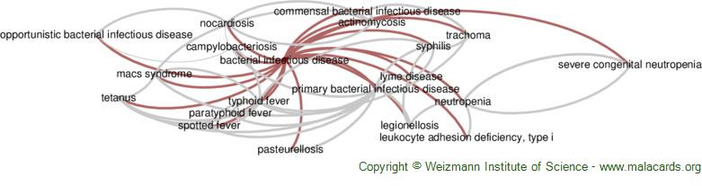Diseases related to Bacterial Infectious Disease