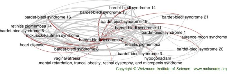 Diseases related to Bardet-Biedl Syndrome 2
