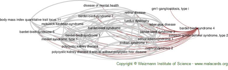 Diseases related to Bardet-Biedl Syndrome 4