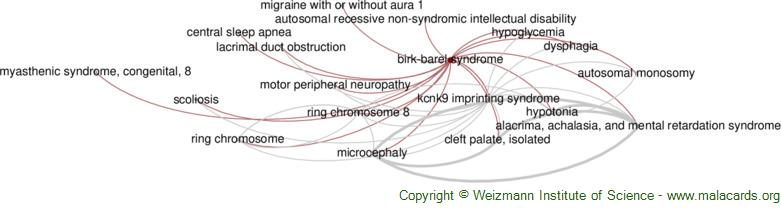 Diseases related to Birk-Barel Syndrome