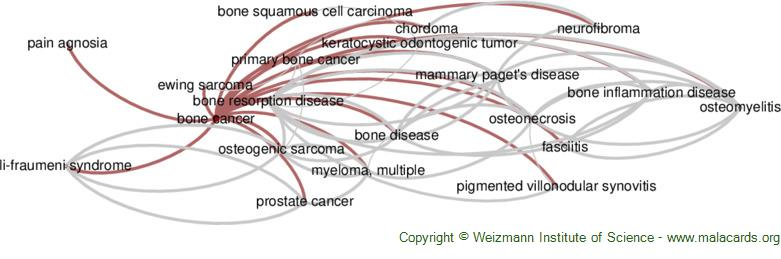 Diseases related to Bone Cancer