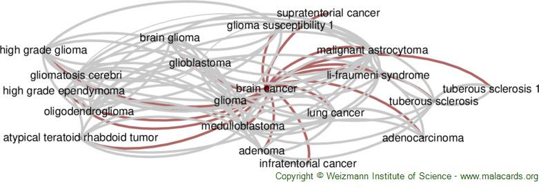 Diseases related to Brain Cancer