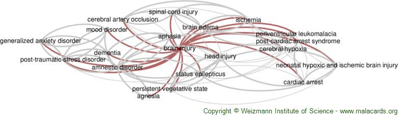 Diseases related to Brain Injury