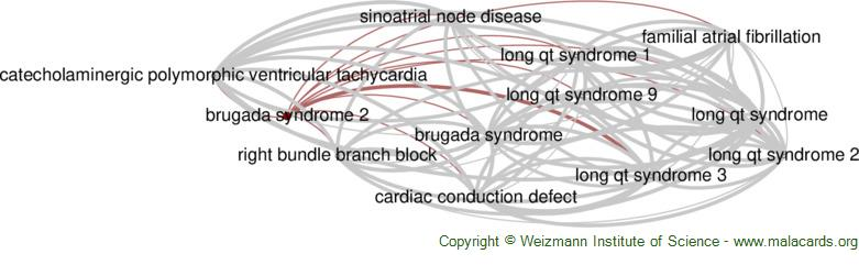 Diseases related to Brugada Syndrome 2