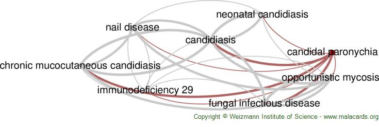 Diseases related to Candidal Paronychia