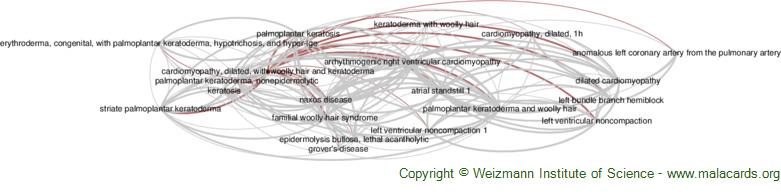 Diseases related to Cardiomyopathy, Dilated, with Woolly Hair and Keratoderma