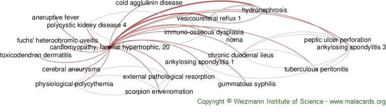 Diseases related to Cardiomyopathy, Familial Hypertrophic, 20