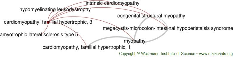Diseases related to Cardiomyopathy, Familial Hypertrophic, 3
