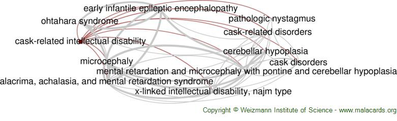 Diseases related to Cask-Related Intellectual Disability