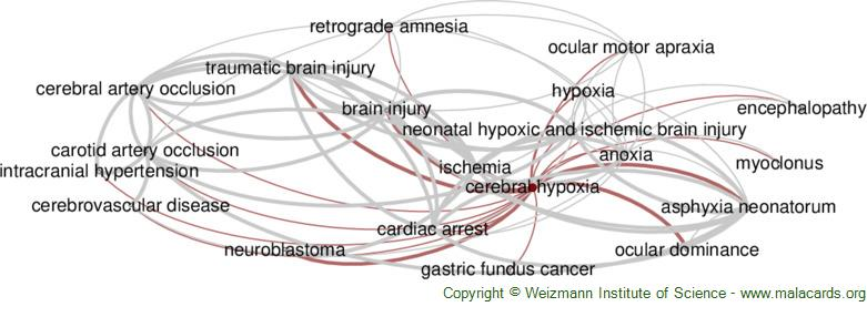 Diseases related to Cerebral Hypoxia