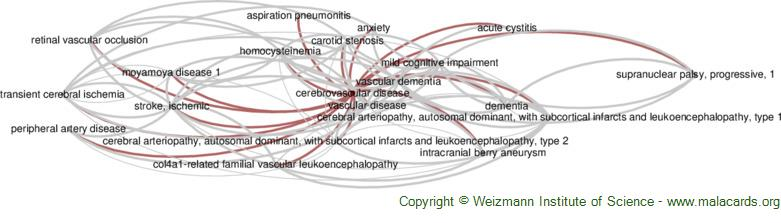 Diseases related to Cerebrovascular Disease