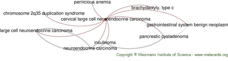 Diseases related to Cervical Large Cell Neuroendocrine Carcinoma