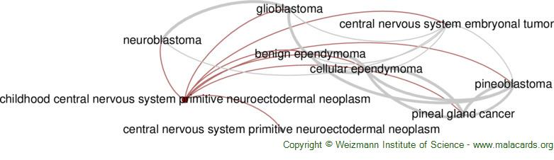 Diseases related to Childhood Central Nervous System Primitive Neuroectodermal Neoplasm