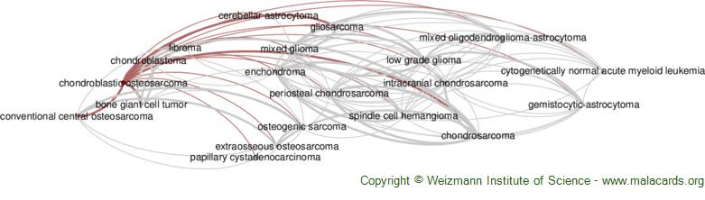 Diseases related to Chondroblastic Osteosarcoma