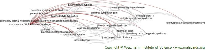 Diseases related to Chromosome 10q23 Deletion Syndrome