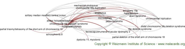 Diseases related to Chromosome 18p Deletion Syndrome