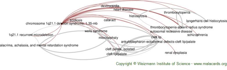 Diseases related to Chromosome 1q21.1 Deletion Syndrome, 1.35-Mb