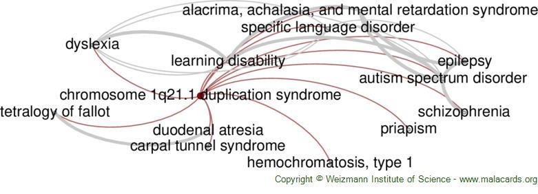 Diseases related to Chromosome 1q21.1 Duplication Syndrome