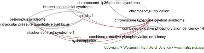 Diseases related to Chromosome 6pter-P24 Deletion Syndrome
