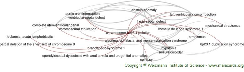 Diseases related to Chromosome 8p23.1 Deletion