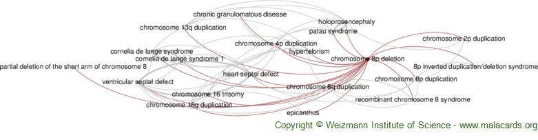 Diseases related to Chromosome 8p Deletion