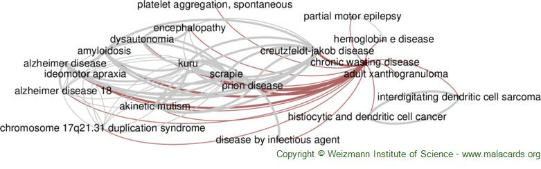 Diseases related to Chronic Wasting Disease
