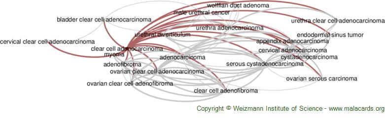Diseases related to Clear Cell Adenocarcinoma