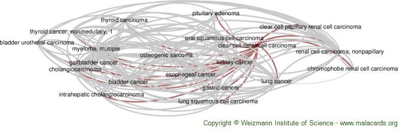 Diseases related to Clear Cell Renal Cell Carcinoma