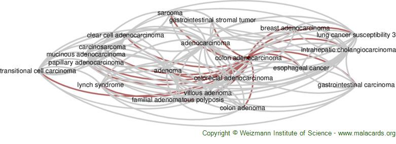 Diseases related to Colon Adenocarcinoma